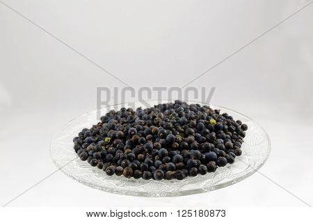 Dried juniper berry on a plate isolated on whitepicture from the Northof Sweden ** Note: Soft Focus at 100%, best at smaller sizes