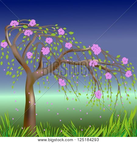 Blooming spring tree on the background of sky, grass and meadows, vector illustration