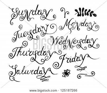 Handwritten days of the week Monday, Tuesday, Wednesday, Thursday, Friday, Saturday and Sunday. Handdrawn calligraphy lettering for diary and banner, calendar and poster. Vector illustration.