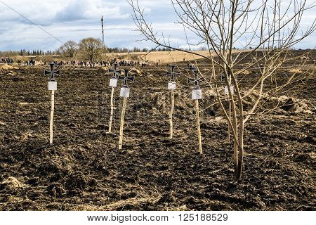 April 03, 2016. Saint-Petersburg. Makeshift crosses on the graves of Wehrmacht soldiers on military-Patriotic festival
