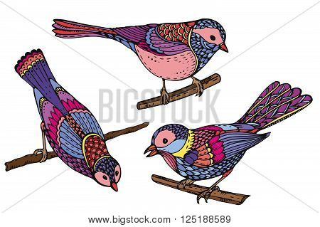 Ste Of Hand Drawn Ornate Birds. Beautiful Colorful Vector Illustration