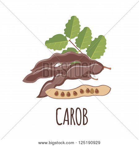 Carob vector logo  in flat style. Isolated object. Superfood carob. Vector illustration.