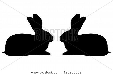 two bunny silhouette on a white background vector illustration