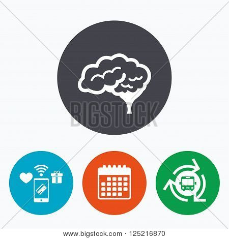 Brain with cerebellum sign icon. Human intelligent smart mind. Mobile payments, calendar and wifi icons. Bus shuttle.