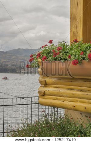 Flowers and wood rustic style architecture detail in front of San Pablo lake, Imbabura, Ecuador