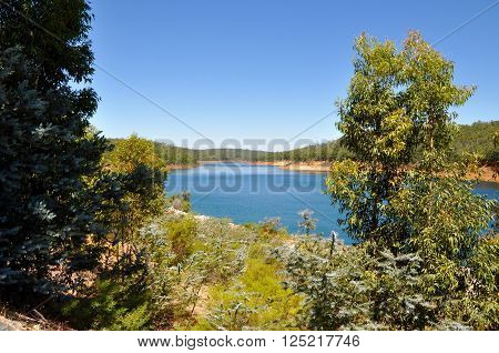 View of the peaceful landscape at the Serpentine River with lush greenery under a clear blue sky in Serpentine, Western Australia.