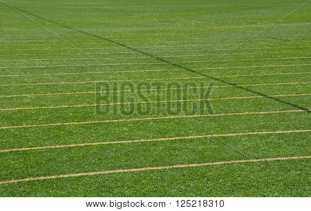 Green manicured sports pitch background with manicured green grass and parallel lines.
