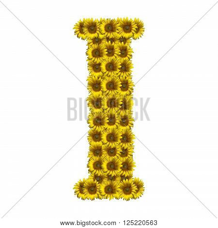 Sunflower alphabet isolated on white background letter I