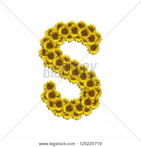 Sunflower alphabet isolated on white background, letter S