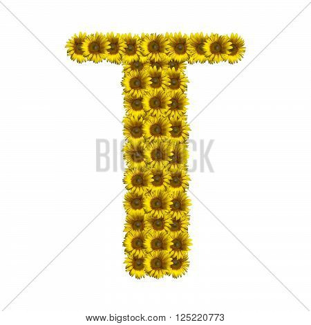 Sunflower alphabet isolated on white background letter T