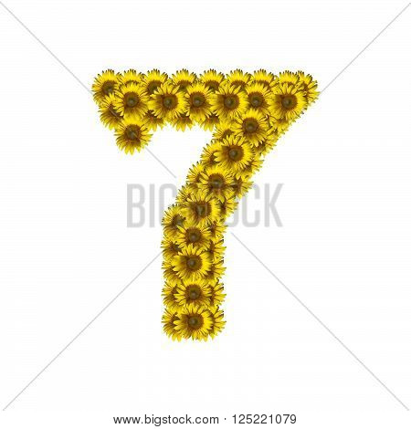Sunflower number isolated on white background, number 7