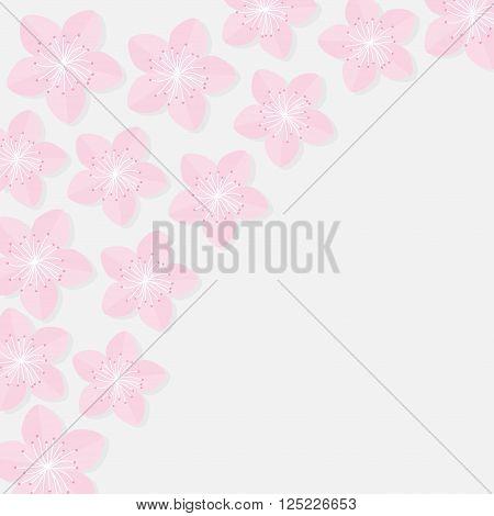 Sakura flowers. Japan blooming cherry blossom set in the corner Isolated White background Flat design Vector illustration