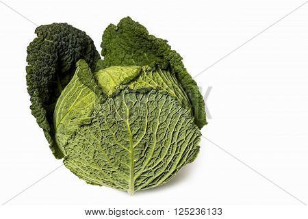 Savoy Cabbage (close-up shot) isolated on white background
