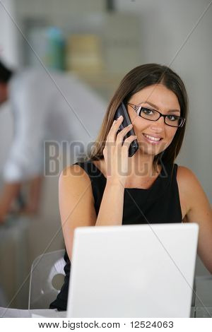 Businesswoman in the office on the phone