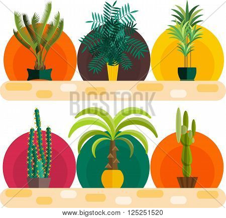 Tropical plants, Set of flat potted houseplants.Tropical vector collection of houseplants.Modern Green plant icons, desert nature, floral exotic, tropical flower, Home tropical garden, wild botany illustration.Vector simple set