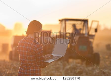 Woman With Laptop On Field