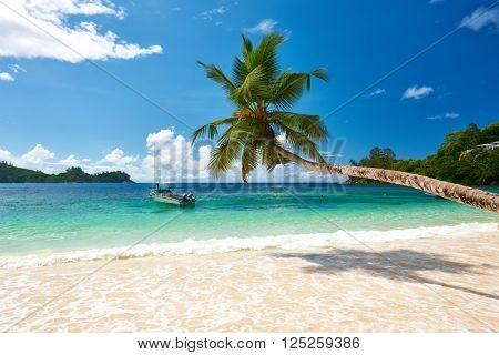 Beautiful beach at Seychelles, Mahe