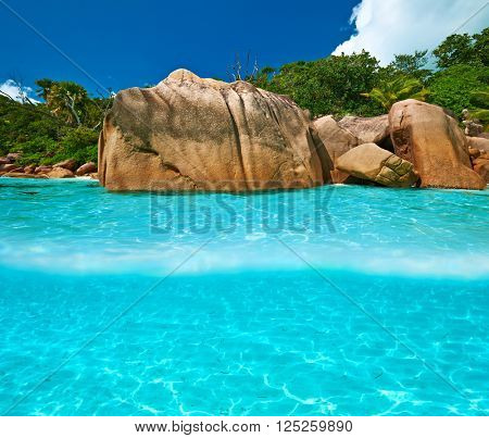 Beautiful beach with white sand bottom underwater and above water split view