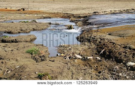 brook flowing on the drying bottom of a dam