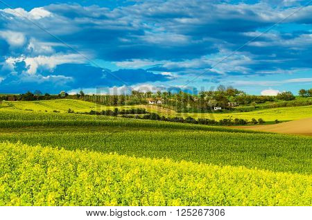 Rural  landscape with fields, waves and blue dramatic sky, spring seasonal natural background
