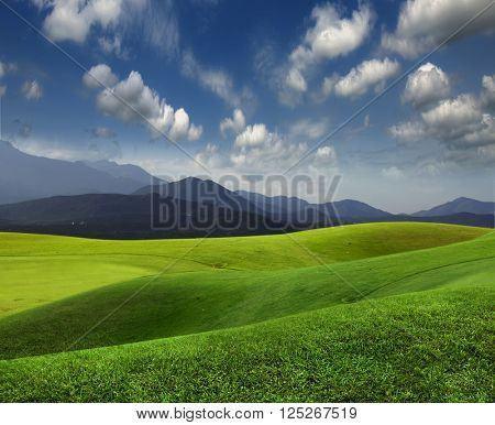 Green meadow and mountains on the horizon