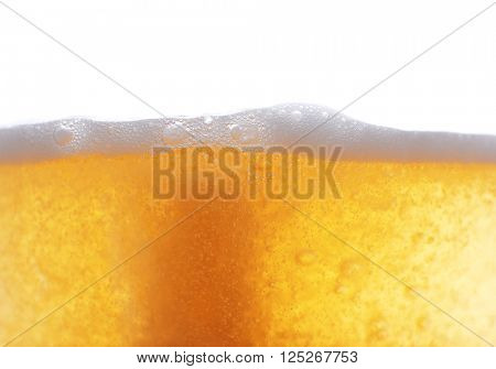 Beer foam, closeup