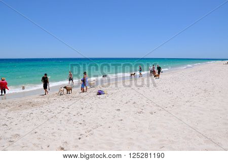 HILLARYS,WA,AUSTRALIA-JANUARY 22,2016: Families and their pets on the animal exercise beach with the Indian Ocean waters in Hillarys, Western Australia.