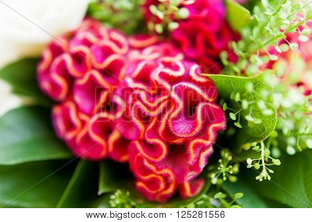 Wedding bouquet on window sill. Bride's traditional symbolic accessory. Floral composition with red celosia flowers.