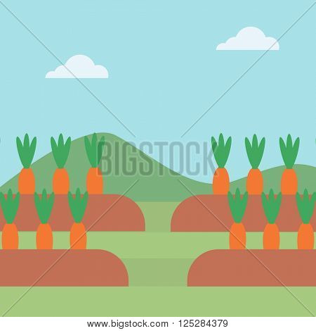 Background of carrots growing on field