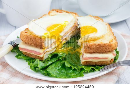 French toasted sandwich Croque madame cut, closeup
