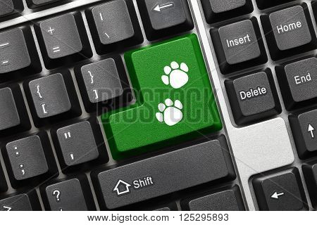 Conceptual Keyboard - Green Key With Dog Footprints Symbol
