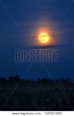 Full moon rising over a foggy meadow