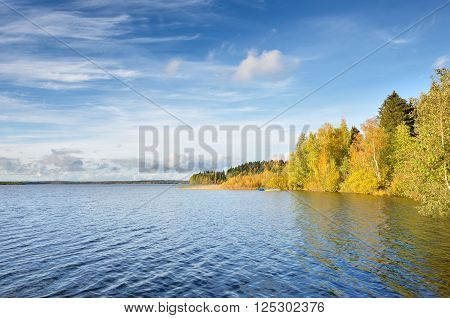Lake landscape during fall season. Blue lake surrounded by beautiful yellow forest.