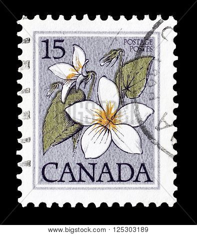 CANADA - CIRCA 1979 : Cancelled postage stamp printed by Canada, that shows Canada violet.