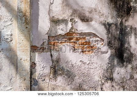 Decayed Old Concrete Wall  With Red Brick