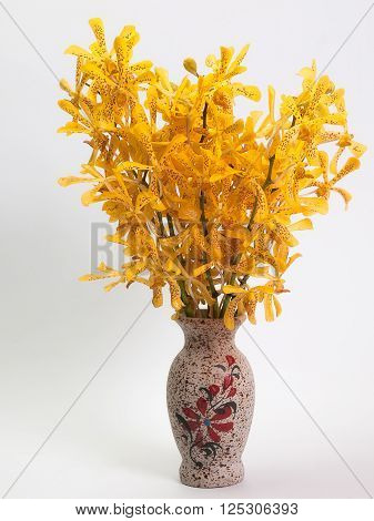 Yellow Mokara Orchids Put them in a vase White background.