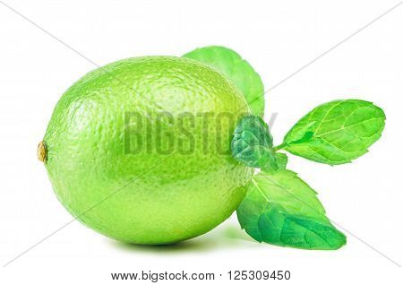 Image of Native Lime over the White Background
