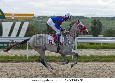 PYATIGORSK,RUSSIA - JUNE 17,2012:Unknown jockey cross the finish line in Pyatigorsk,Caucasus,Russia on June 17,2012.