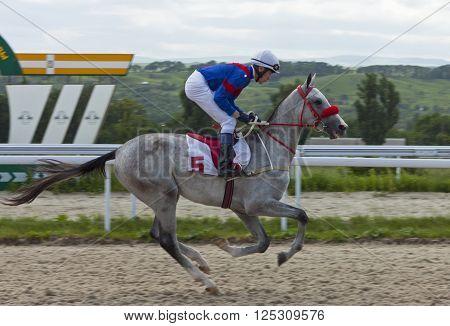 PYATIGORSK,RUSSIA - JUNE 17,2012:Unknown jockey cross the finish line in Pyatigorsk,Caucasus,Russia on June 17,2012.