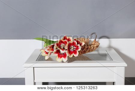 Bouquet of variegated tulips on white table near striped wall