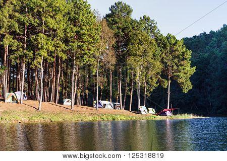 Dome tents near lake and pine trees in camping site at Pang Ung (Pang Tong reservoir) Mae Hong Son Thailand