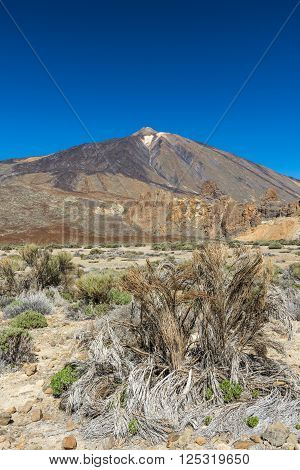 Flat desert valley lies at the foot of the volcano Teide on Tenerife.
