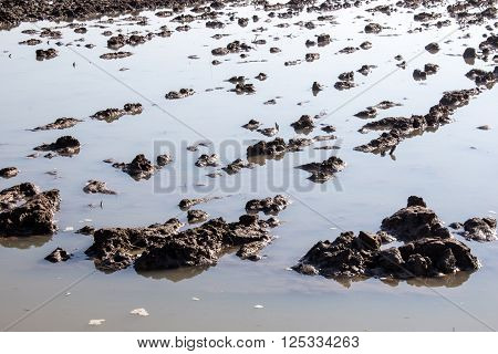 Spring mud plow field in water flood