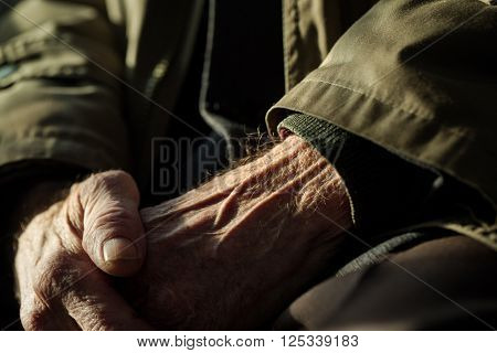 Hands of the old man. Lots of texture and character in the old male hands.