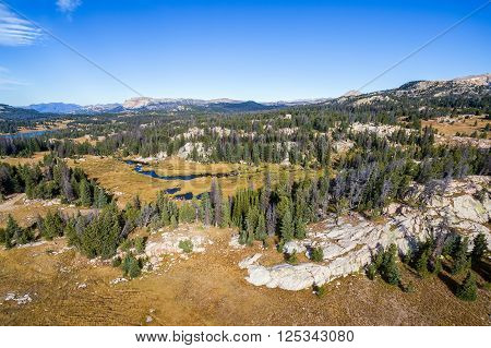 Shoshone National Forest View