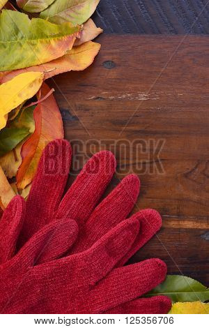 Autumn Fall Background On Dark Wood.