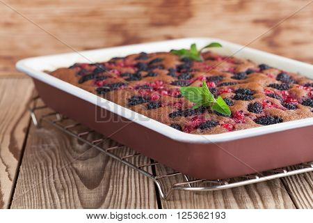 Gingerbread cake with mulberries and red currants. Shallow dofw