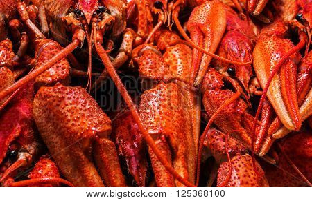 Fresh juicy boiled crawfish closeup. seafood background.