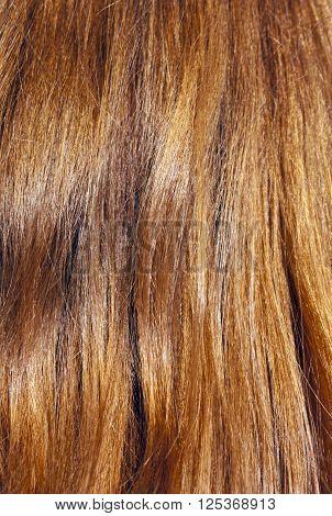 Red Hair On Sun.