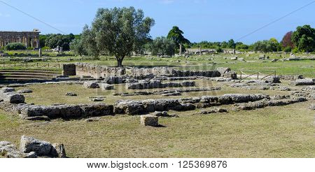 Ruins of ancient greek city Paestum Italy